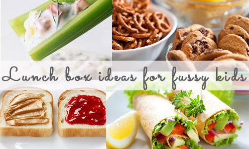 Lunch box ideas for fussy kids!