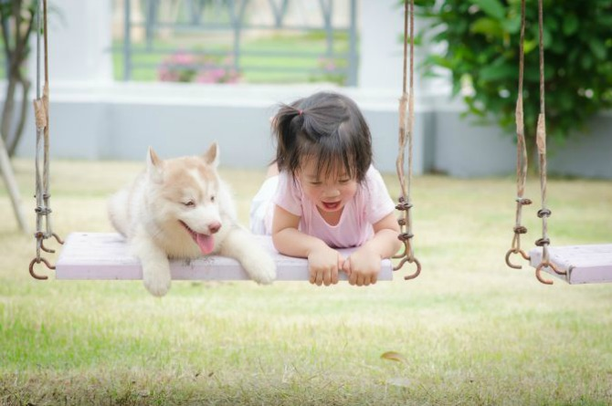 4. Pets In The Park @ ORTO