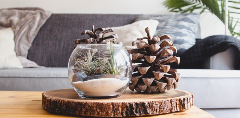 New Year, New Scent: Home Scents To Breathe New Life to your homes