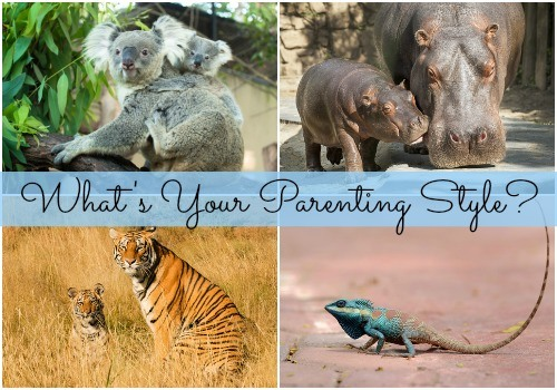 Is your parenting style like that of a hippo?
