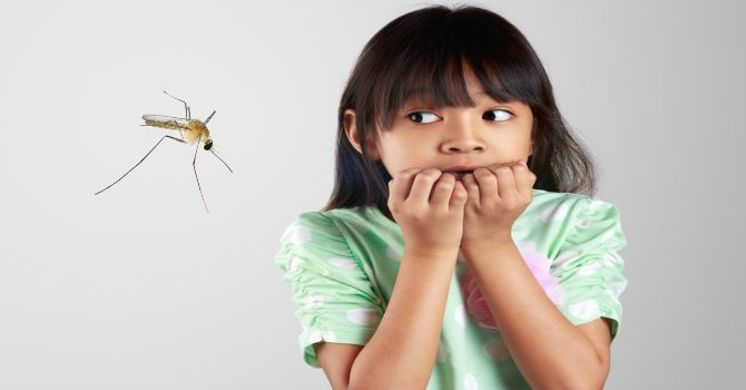 How I am safeguarding my home and the kids against dengue outbreak
