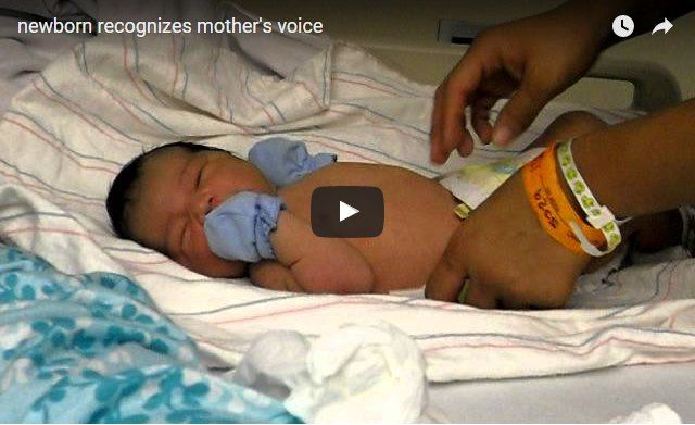 Mother's voice has a calming effect on newborn baby