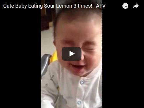 This baby tastes lemon and makes the cutest faces ever