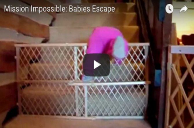 Thought babies are not good at escaping? This video proves you wrong
