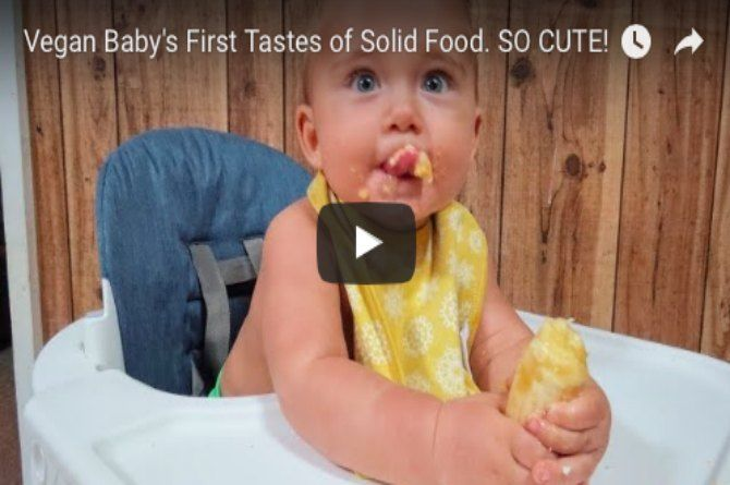 Cute vegan baby tastes solid food for the first time