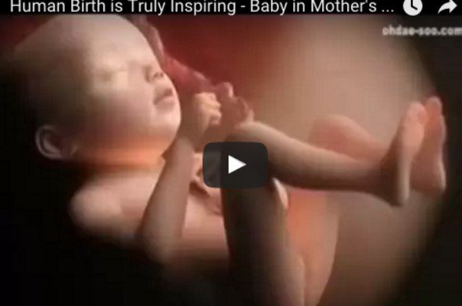 This video shows you why human birth is truly inspiring