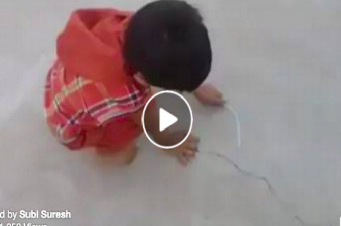 Amazing talent: This little boy takes just seconds to sketch a cow