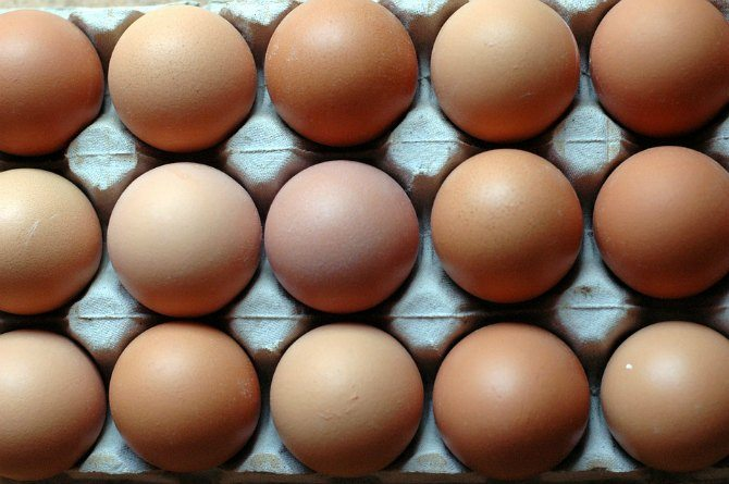 Health Alert! The eggs you give your child for breakfast could be ARTIFICIAL!