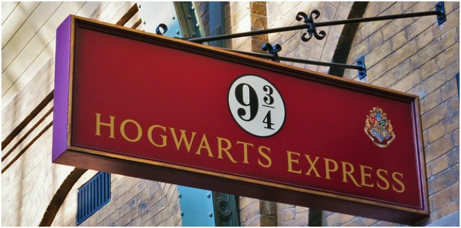 Expelliarmus! ICSE curriculum will now include Harry Potter and Tintin