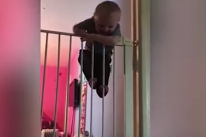 Incredible! Super baby climbs over gate twice his size