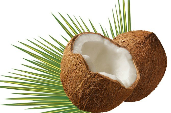 src=https://www.theindusparent.com/wp content/uploads/sites/9/2017/10/coconut.jpg 4 desi deworming remedies to get rid of intestinal worms in kids