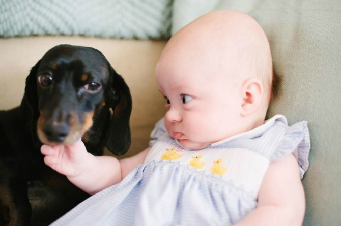 """""""Excuse me, doggy. I'm talking to you"""""""